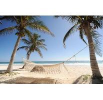 Foto de terreno comercial en venta en  , puerto morelos, benito juárez, quintana roo, 2627947 No. 01