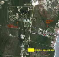 Foto de terreno comercial en venta en  , puerto morelos, benito juárez, quintana roo, 2628563 No. 01