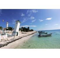 Foto de terreno comercial en venta en  , puerto morelos, benito juárez, quintana roo, 2638642 No. 01