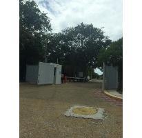 Foto de terreno habitacional en venta en  , puerto morelos, benito juárez, quintana roo, 2732301 No. 01