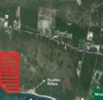 Foto de terreno comercial en venta en  , puerto morelos, benito juárez, quintana roo, 3796392 No. 01