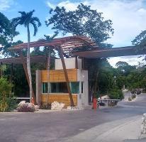Foto de terreno habitacional en venta en punta cedro 17 , puerto morelos, benito juárez, quintana roo, 4031830 No. 01