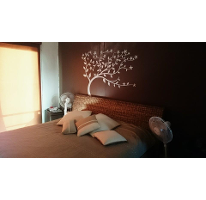 Foto de casa en renta en  , punta estrella, solidaridad, quintana roo, 2624930 No. 01