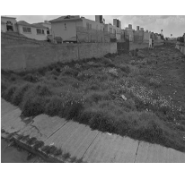 Foto de terreno habitacional en venta en  , purísima, metepec, méxico, 2595893 No. 01