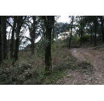 Foto de terreno habitacional en venta en  , purísima, mineral del monte, hidalgo, 2737539 No. 01