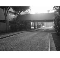 Foto de departamento en renta en  , rancho cortes, cuernavaca, morelos, 2588308 No. 01