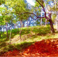 Foto de terreno habitacional en venta en rancho el maguey 106, el tuito, cabo corrientes, jalisco, 2153644 no 01