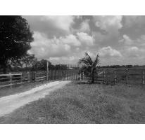 Foto de terreno habitacional en venta en rancho en venta chekubul camino en terraceria a parcelas 0, chekubul, carmen, campeche, 2128897 No. 01
