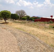 Foto de terreno habitacional en venta en  , real de tetela, cuernavaca, morelos, 1256577 No. 01