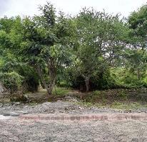 Foto de terreno habitacional en venta en  , real del puente, xochitepec, morelos, 2273103 No. 01