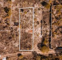 Foto de terreno habitacional en venta en  , real montejo, mérida, yucatán, 0 No. 01