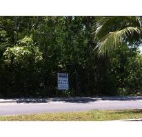 Foto de terreno comercial en venta en  , repobladores de 1848, cozumel, quintana roo, 2266612 No. 02