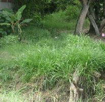Foto de terreno habitacional en renta en  , reserva territorial, xalapa, veracruz de ignacio de la llave, 2608720 No. 01