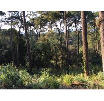 Foto de terreno habitacional en venta en rincón del bosque 0, avándaro, valle de bravo, méxico, 2841952 No. 01