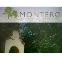 Foto de terreno habitacional en venta en  , rincón del montero, parras, coahuila de zaragoza, 2561512 No. 01