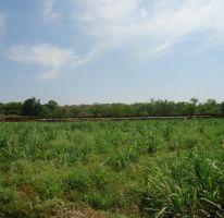 Foto de rancho en venta en rio amacuzac 36, tehuixtla, jojutla, morelos, 2092594 no 01