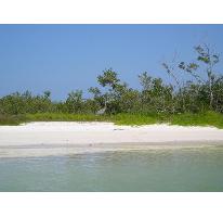 Foto de terreno comercial en venta en  , rio lagartos, río lagartos, yucatán, 2611824 No. 01