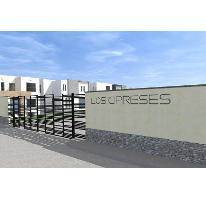 Foto de terreno habitacional en venta en  , río verde centro, rioverde, san luis potosí, 2714932 No. 01