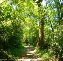 Foto de terreno habitacional en venta en ruta de los cenotes kilometro 5.5 , puerto morelos, benito juárez, quintana roo, 3846211 No. 01