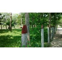 Foto de terreno habitacional en venta en  , saloya 2 sección, nacajuca, tabasco, 2732303 No. 01