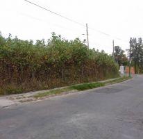 Foto de terreno habitacional en venta en, san antón, cuernavaca, morelos, 1417231 no 01