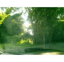 Foto de terreno habitacional en venta en  , san antón, cuernavaca, morelos, 2593979 No. 01