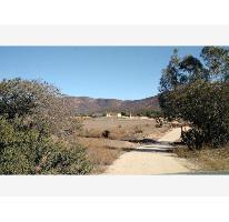 Foto de rancho en venta en  , san antonio de las minas, ensenada, baja california, 2685943 No. 01
