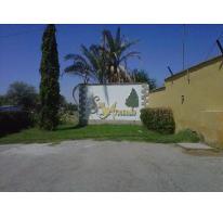 Foto de terreno habitacional en venta en  , san armando, torreón, coahuila de zaragoza, 2821528 No. 01