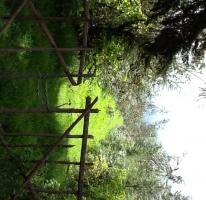 Foto de terreno habitacional en venta en, san bartolo, amanalco, estado de méxico, 829557 no 01