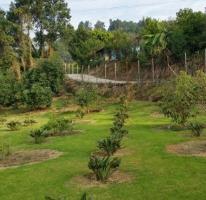 Foto de terreno habitacional en venta en san bartolo amanalco , valle de bravo, valle de bravo, méxico, 4009975 No. 02