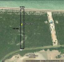 Foto de terreno habitacional en venta en  , san crisanto, sinanché, yucatán, 2522004 No. 01
