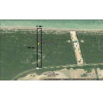 Foto de terreno habitacional en venta en  , san crisanto, sinanché, yucatán, 2622162 No. 01