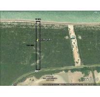 Foto de terreno habitacional en venta en  , san crisanto, sinanché, yucatán, 2904861 No. 01