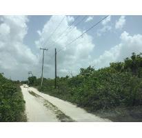Foto de terreno habitacional en venta en  , san diego, dzemul, yucatán, 2529383 No. 01