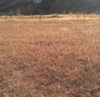Foto de terreno habitacional en venta en, san felipe del agua 1, oaxaca de juárez, oaxaca, 2273832 no 01