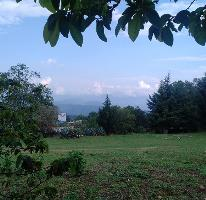 Foto de terreno habitacional en venta en  , san gabriel ixtla, valle de bravo, méxico, 3057932 No. 01