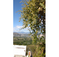 Foto de terreno habitacional en venta en, san gaspar, jiutepec, morelos, 1612582 no 01