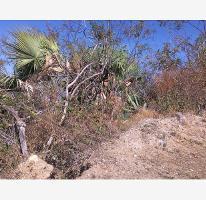 Foto de terreno habitacional en venta en, san gaspar, jiutepec, morelos, 906753 no 01