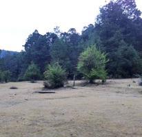 Foto de terreno habitacional en venta en san isidro 0, corral de piedra, san cristóbal de las casas, chiapas, 2126637 No. 01