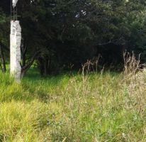Foto de terreno habitacional en venta en, san isidro la paz 2a sección, nicolás romero, estado de méxico, 1190823 no 01