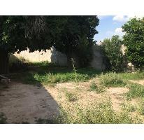 Foto de terreno habitacional en venta en  , san isidro, lerdo, durango, 2700181 No. 01