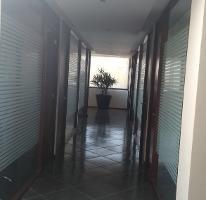 Foto de oficina en renta en  , san jerónimo lídice, la magdalena contreras, distrito federal, 4228502 No. 01