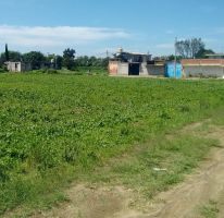 Foto de terreno habitacional en venta en san jose 0, culhuaca, santa isabel xiloxoxtla, tlaxcala, 2200006 no 01