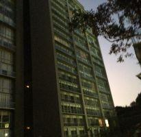 Foto de departamento en renta en, san josé del olivar, álvaro obregón, df, 1342843 no 01