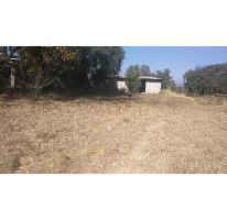 Foto de terreno habitacional en venta en  , san lucas cuauhtelulpan, tlaxcala, tlaxcala, 0 No. 01
