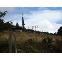 Foto de terreno habitacional en venta en  , san luis mextepec, zinacantepec, méxico, 0 No. 01