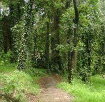 Foto de terreno habitacional en venta en  , san mateo tlaltenango, cuajimalpa de morelos, distrito federal, 2939100 No. 01
