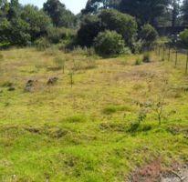 Foto de terreno habitacional en venta en, san miguel xicalco, tlalpan, df, 1733532 no 01