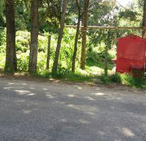 Foto de terreno habitacional en venta en, san nicolás, san cristóbal de las casas, chiapas, 2393002 no 01