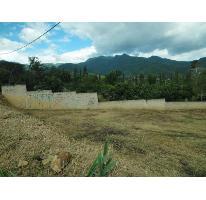 Foto de terreno habitacional en venta en  , san pablo etla, san pablo etla, oaxaca, 1569672 No. 01